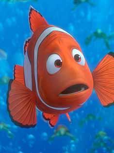 imagen del pez Nemo